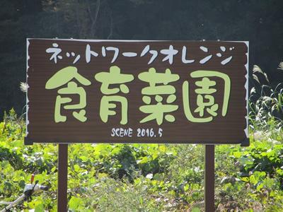 ネットワークオレンジの食育菜園
